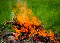 В ДЧС рассказали, как правильно сжигать мусор на дачных участках, чтобы не допустить пожара