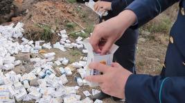 Две огромные свалки с останками животных и лекарствами обнаружили в Павлодаре