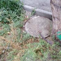 Останки человеческого плода обнаружены во дворе павлодарской многоэтажки