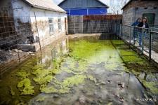 Третий год частные дома Второго Павлодара топят грунтовые воды