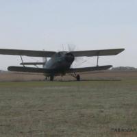 В Павлодарской области начали травить комаров с воздуха