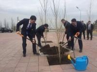 Традицию обниматься после подписания меморандума заменили на посадку деревьев