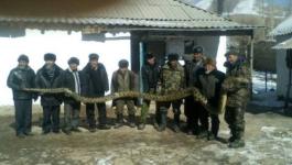 В Павлодарской области прокомментировали фото с анакондой