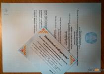 В Павлодарской области явка избирателей на выборах депутатов составила 77,7%
