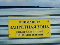 Расследование по факту вспышки сибирской язвы в Иртышском районе до сих пор не закончилось