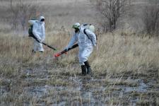В Павлодарской области первый этап обработки против гнуса дал положительные результаты