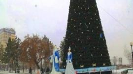 Главную елку Павлодара украсят только после Дня Независимости
