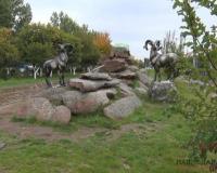 В Павлодарской области подсчитывают диких животных и птиц