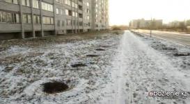 В Павлодаре выкопали больше 150 деревьев для прокладки тепломагистрали