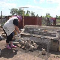 Жительница Успенского района: «Жизнь в деревне - не хуже, чем в городе»