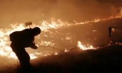 Горевшую пойму Иртыша тушили лесники, пожарные и добровольцы