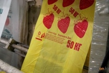 Павлодарским производителям полиэтиленовых пакетов мешает китайская контрабанда