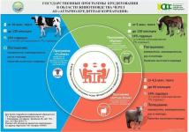 Госпрограммы кредитования для животноводов