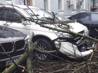 Число пострадавших от урагана в Москве достигло 170