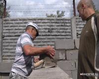 Чернобыльцы и ветераны военно-морского флота из Аксу помогли приюту для животных
