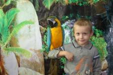 В Павлодар на выставку привезли больше 20 видов тропических птиц