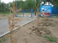 Перед Назарбаевым не стыдно?