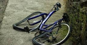 Пьяный велосипедист протаранил дерево в Павлодаре