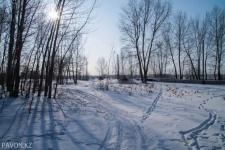 Погода в Павлодаре