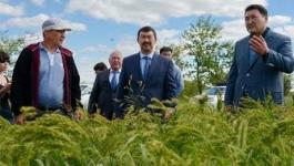 Аким Павлодарской области ознакомился с состоянием соцобъектов и посевами в Успенском районе