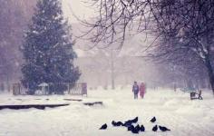 В Астане и Акмолинской области из-за сильного ветра объявлено штормовое предупреждение