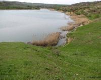 Почему в Павлодарской области природопользователи отказываются от водоемов?