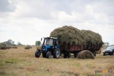 Павлодарская область нуждается в трактористах и врачах