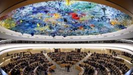 В ООН приняли резолюцию в поддержку свободы слова в интернете