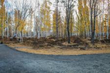 Парки Павлодара преображаются