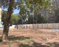 Хвойные и плодовые деревья уничтожили по улице Короленко
