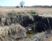 Поля Черноярки превращаются в болота