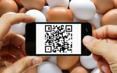 Маркировать QR-кодом яйца и молочную продукцию планируют в министерстве сельского хозяйства РК