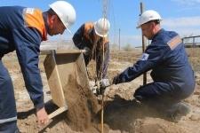 Больше тысячи деревьев за месяц высадили работники АО «Алюминий Казахстана»