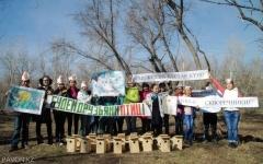 В парке Ворушина школьники совместно с металлургами установили скворечники