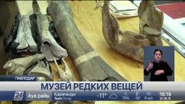 Коллекцию редких экспонатов готовят к выставке в Павлодаре