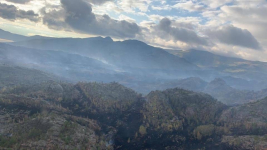 Пожар в Баянауле: огонь локализовали, работает авиатехника, более 500 человек тушат огонь