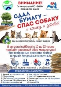 Сдай бумагу - спаси собаку