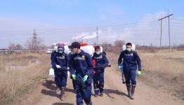 В Павлодаре начались работы по обработке водоемов от комаров