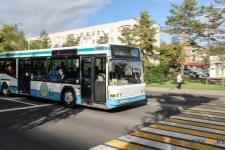 В Павлодарской области 350 водителей автобусов допустили нарушение ПДД
