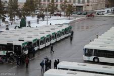 Люди и автобусы