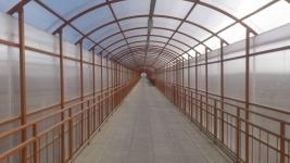 Надземные пешеходные переходы будут строить в Павлодаре