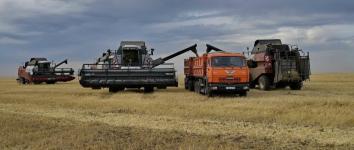 Свыше 700 тысяч тонн зерновых собрали павлодарские хлеборобы