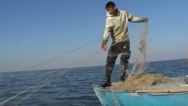 В РК введен временный запрет на вылов рыбы в водоемах и реках