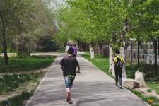 О погоде в Павлодаре на ближайшие три дня рассказали синоптики