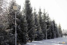 До плюсовой температуры потеплеет в Павлодаре в выходные