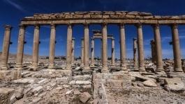 Сирийская армия освободила историческую цитадель Пальмиры