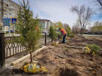 Обновленный городской парк павлодарцам презентуют в День защиты детей