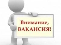 Почти год в одном из отделов акимата Павлодара не могут найти сотрудника на вакантное место