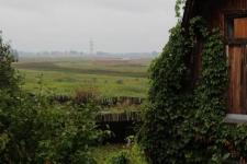 Павлодарские дачники больше года не могут получить компенсацию