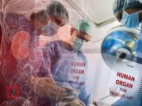 Центры трансплантации начали проверять в Казахстане